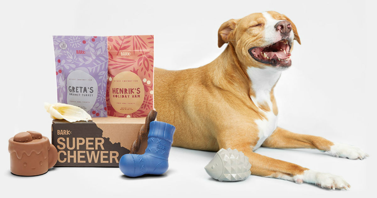 Lowest Price: Super Chewer Dog Box ONLY $5.00 + Free Shipping